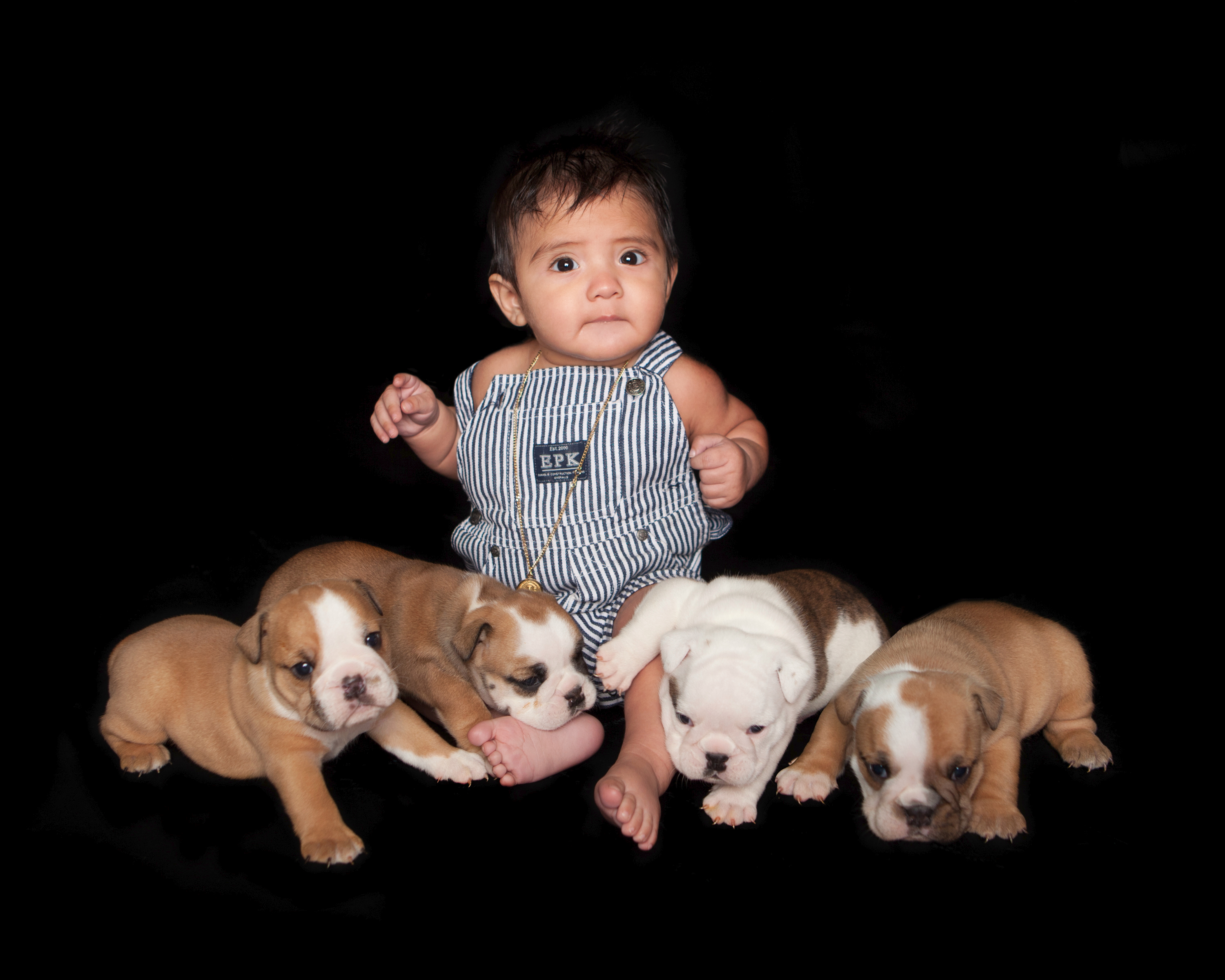 pet photography with baby