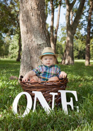 Houston Baby Photographer Alisa Murray #alisamurray