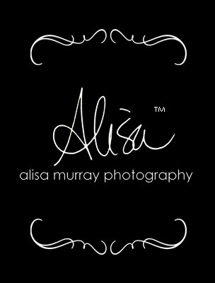 Alisa Murray Photography logo
