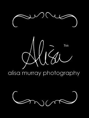 Alisa Murray Photography logo